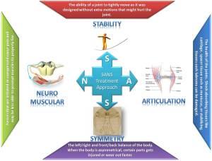 SANS-Infographic