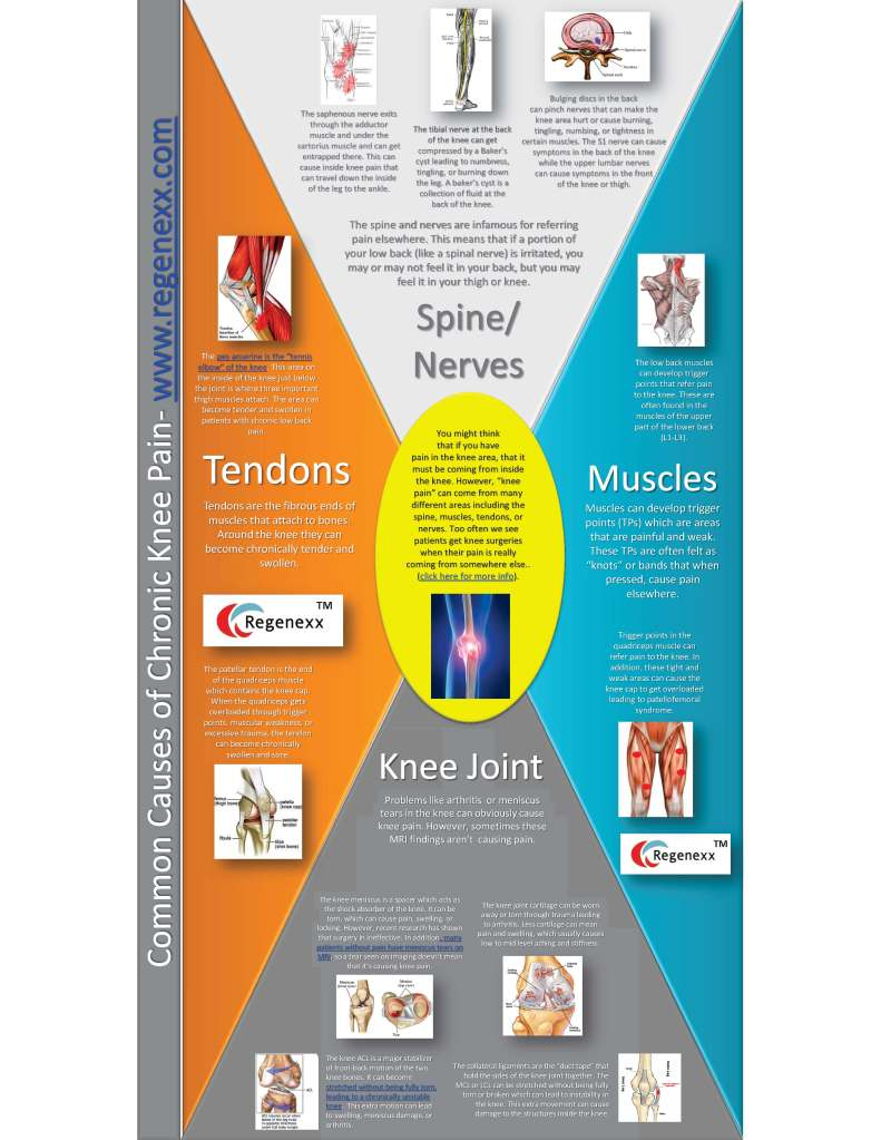 Common-causes-of-Chronic-knee-pain-Infographic